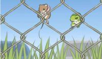 【中英双语】旅行青蛙:一款让中国着迷的可爱日本游戏